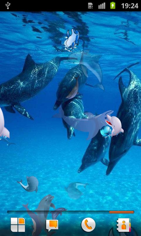 Dolphin Live Wallpaper   screenshot 480x800