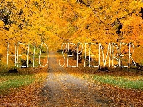 Free Download The Spotted Chihuahua Hello September Your