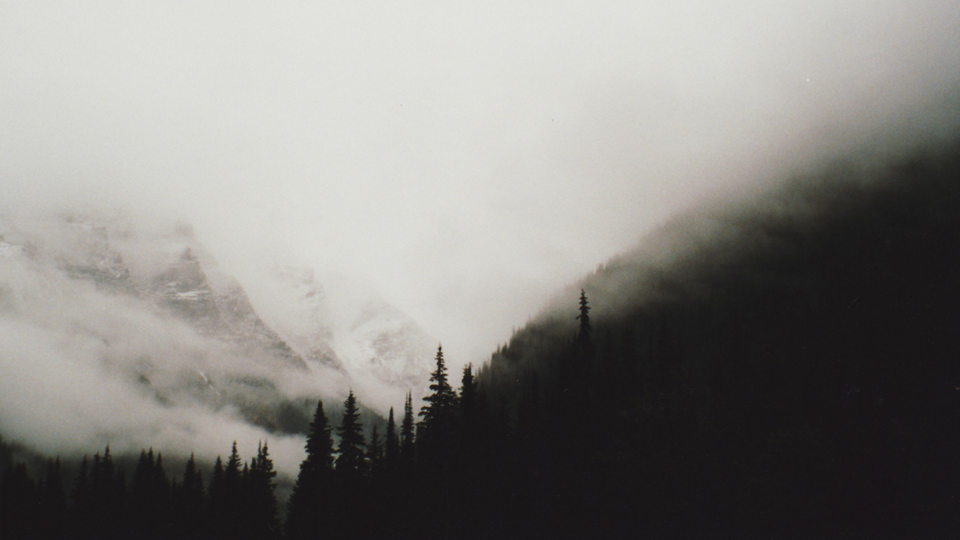 Black and white mountains wallpaper forests trees foggy mountains 1920x1080
