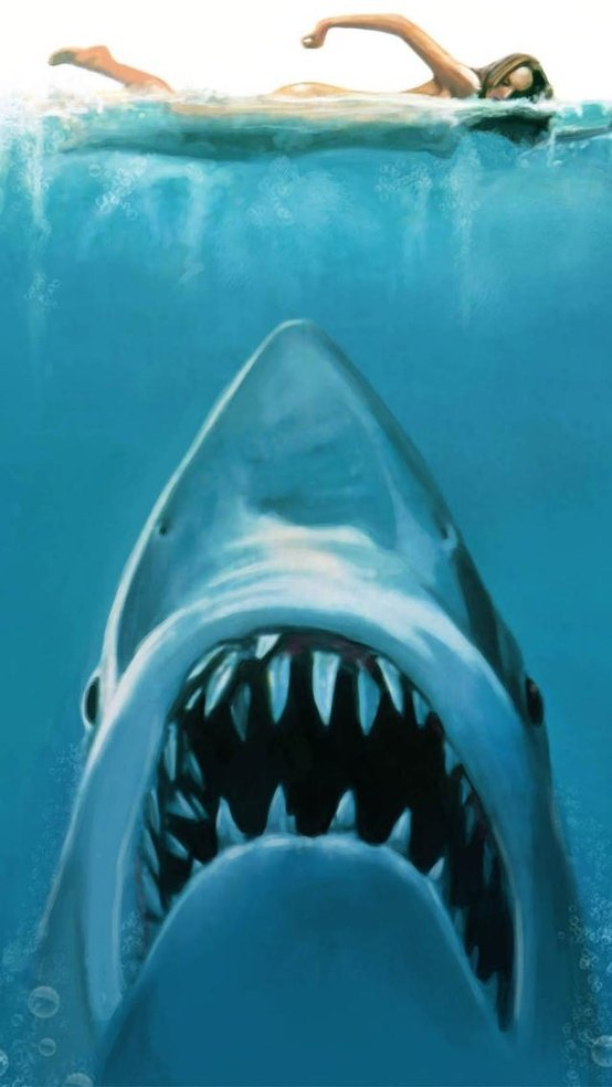 iPhone 5 Shark Attack Wallpaper 554x984