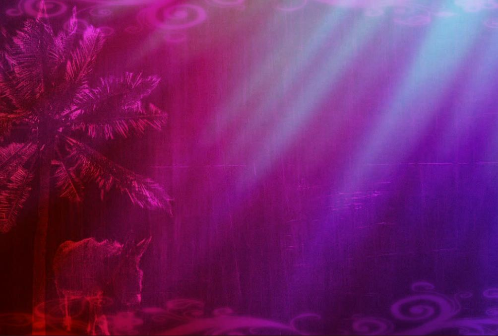 Royal Purple Background Palm sunday royal purple 1004x677
