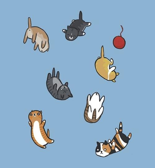 Cat Wallpapers For Iphone: [48+] Cute Blue Wallpaper Tumblr On WallpaperSafari