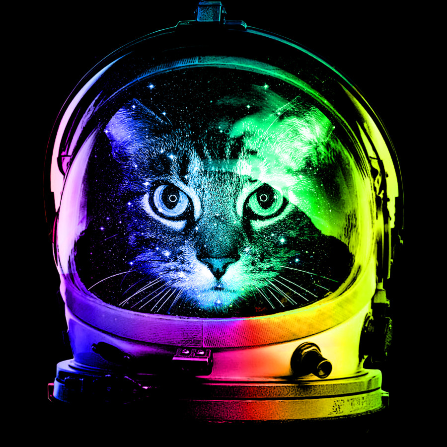 Astronaut Cat by Design By Humans 900x900