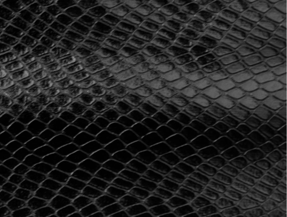 Black Snake Skin Wallpaper 924x699