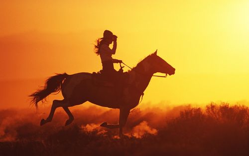 Horse Ride On The Sunset Picture For iPhone Blackberry iPad Horse 500x313
