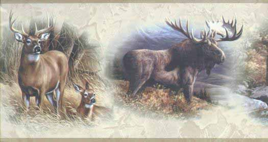 Wildlife Collage Wallpaper Border WD4304B   Wallpaper Border 525x278