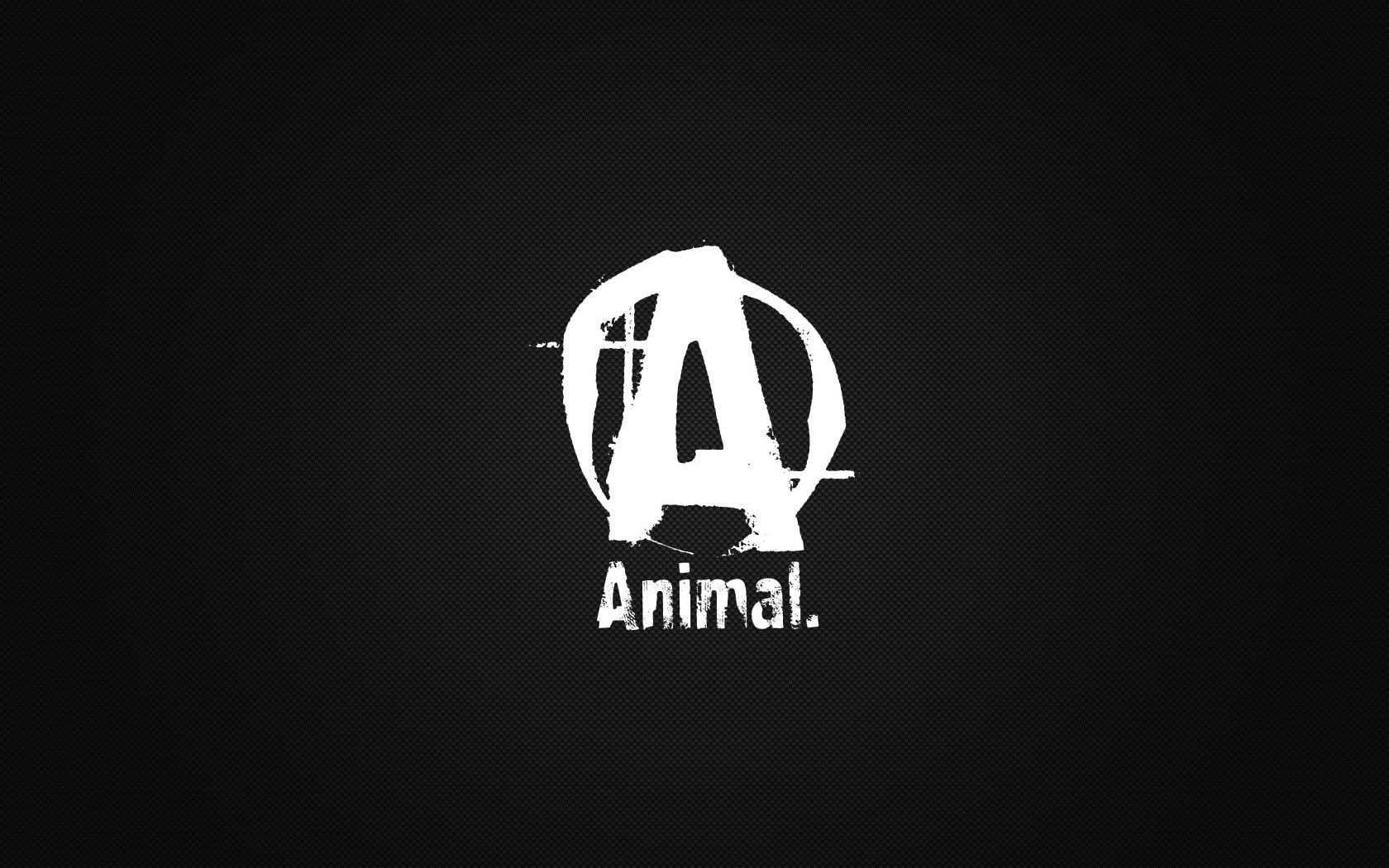 Animal Pak Wallpapers 1680x1050