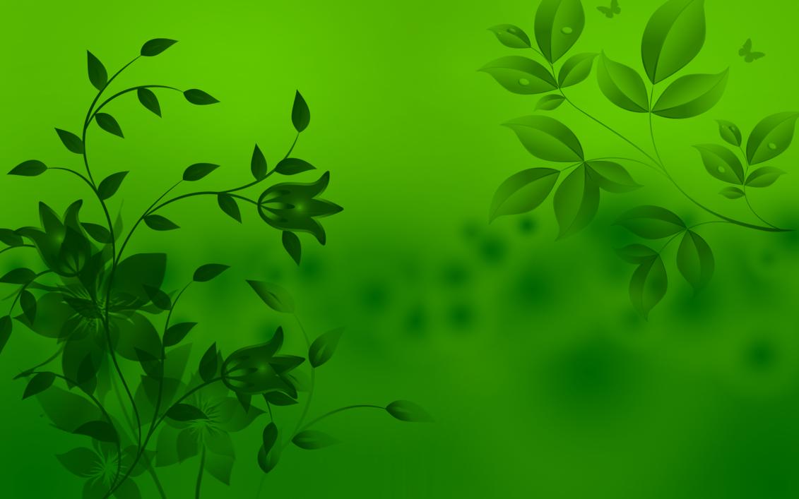 Green HD wallpapersGreen leaves HD 1080p Wallapper 1131x707