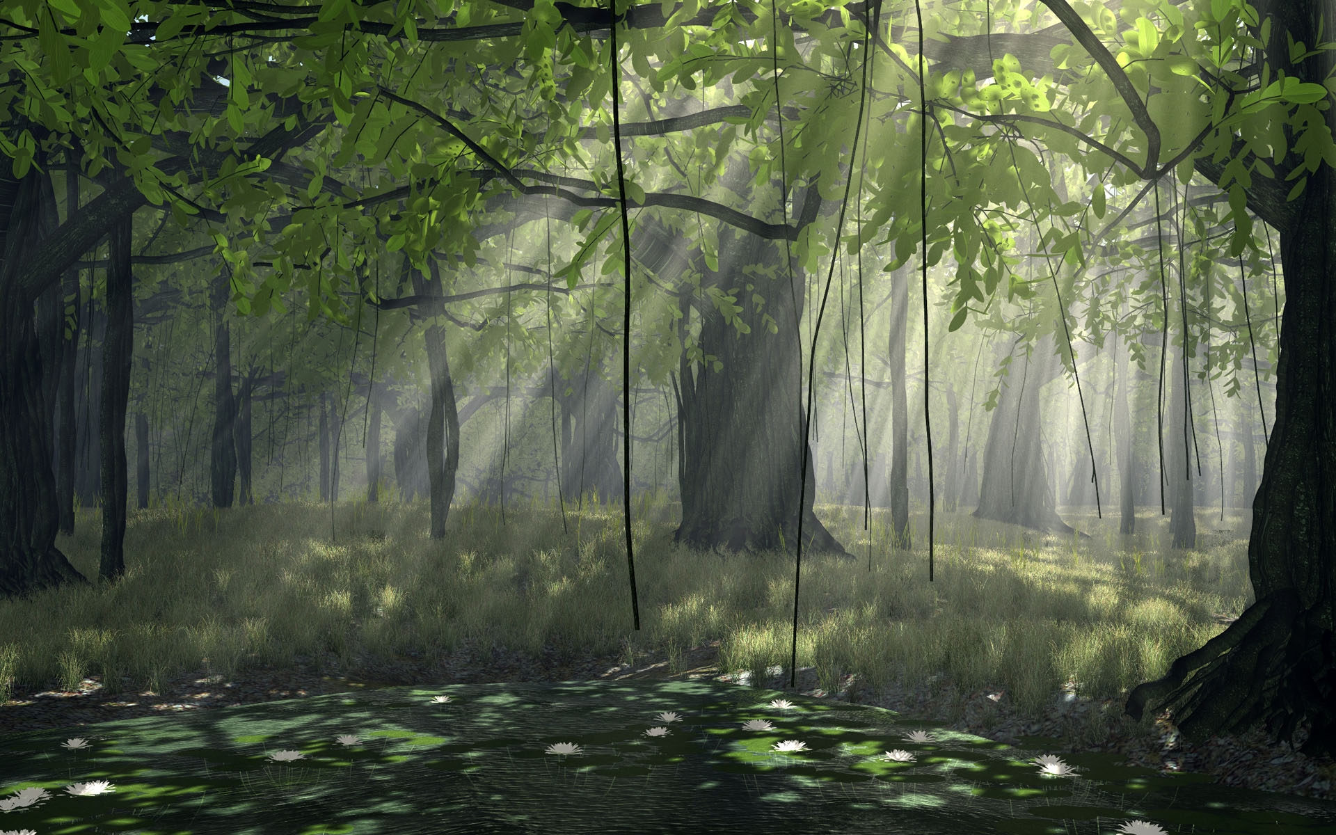 Black And White Pictures Anime Forest 27 Wide Wallpaper 1920x1200