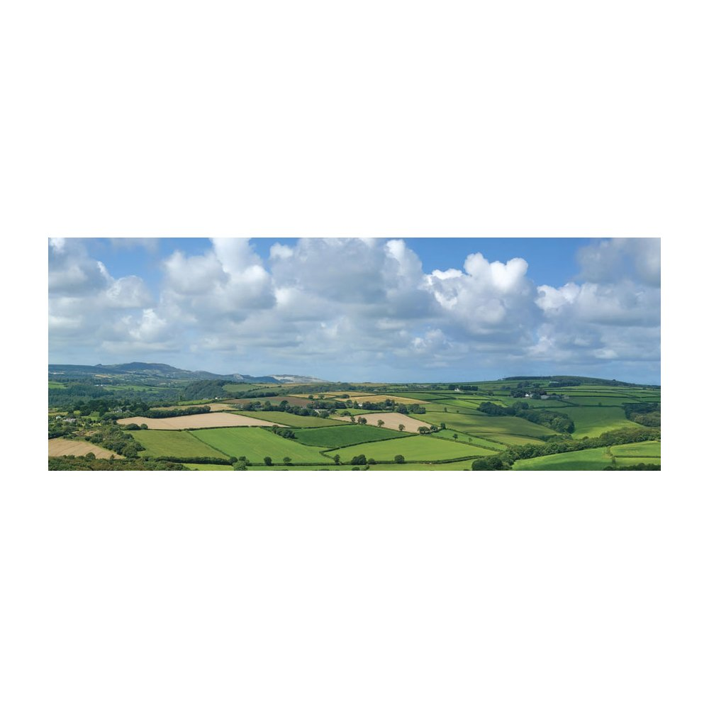 Farmlands Vista Panoramic Peel and Stick Wall Mural Lowes Canada 1000x1000