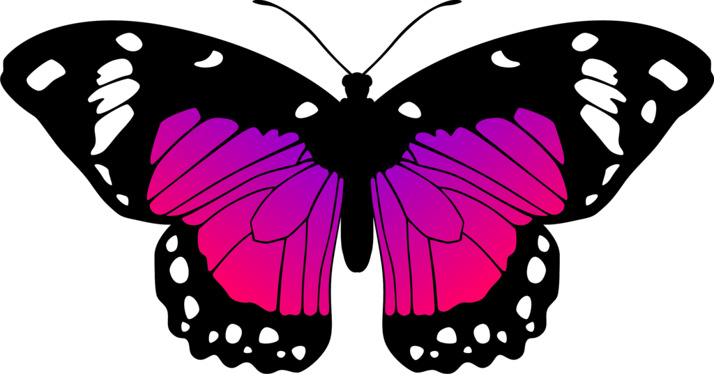 [47+] Pink and Purple Butterfly Wallpaper on WallpaperSafari
