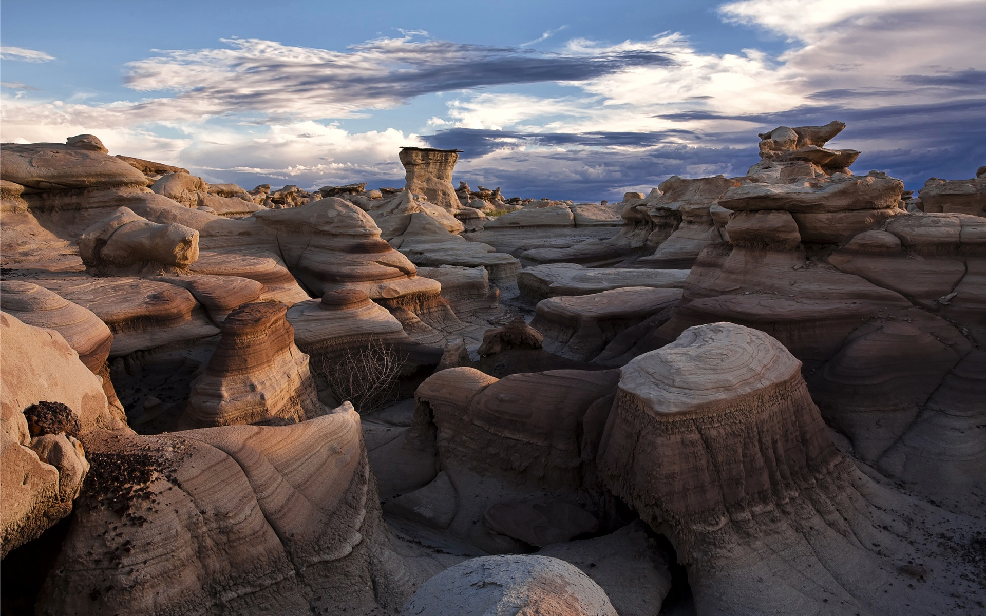 Bisti Badlands New Mexico Wallpapers HD Wallpapers 1920x1200