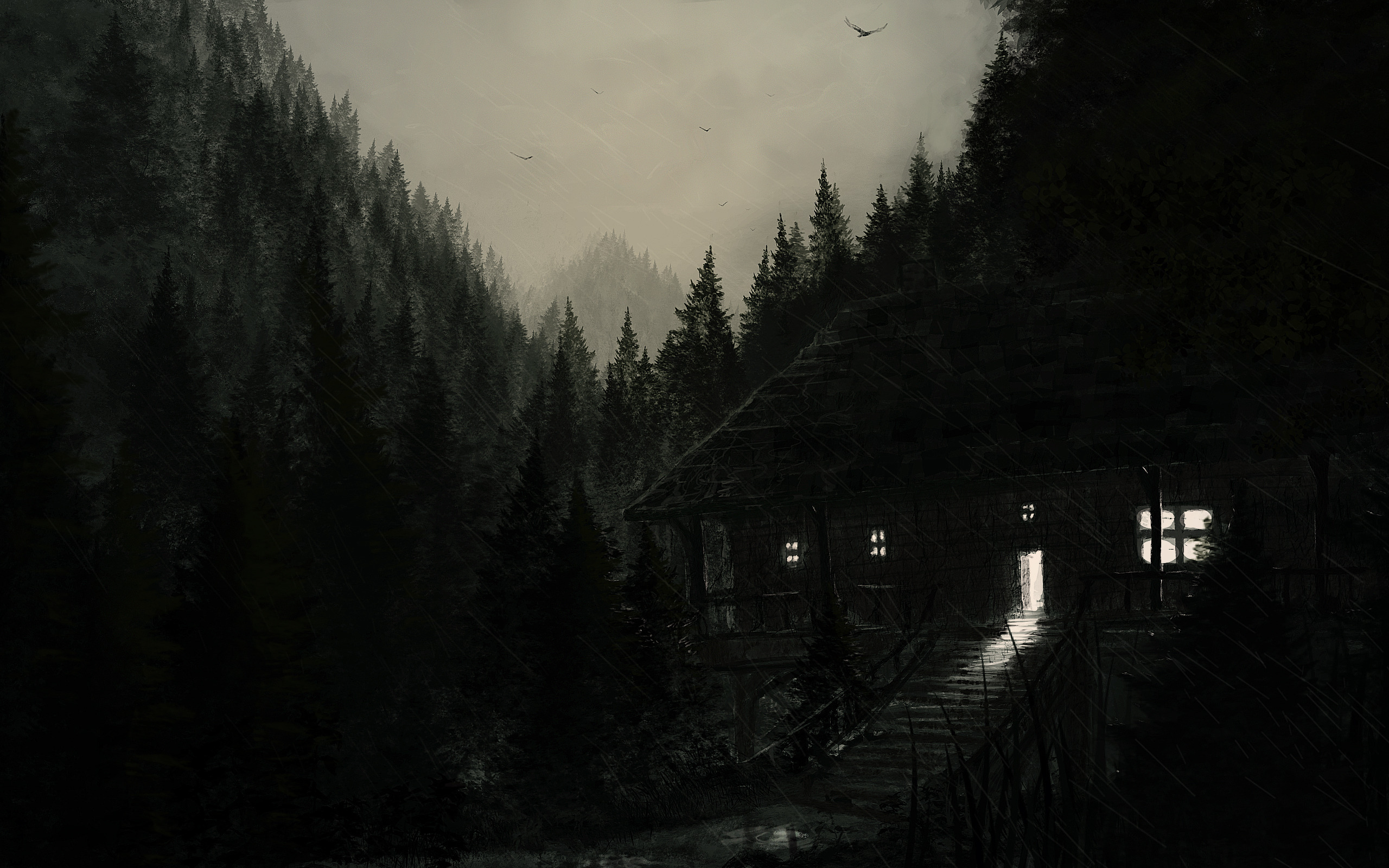 Dark Woods Wallpaper 38382 2560x1600