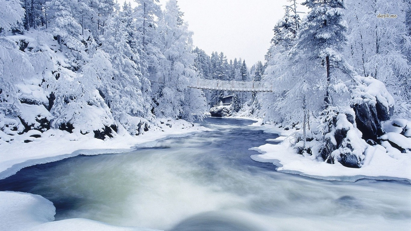 Snowy forest river wallpaper   Nature wallpapers   13326 1366x768