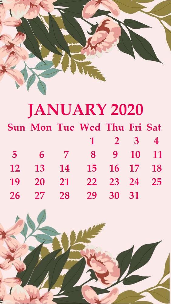 iPhone 2020 Calendar Wallpaper Calendar 2020 564x1001