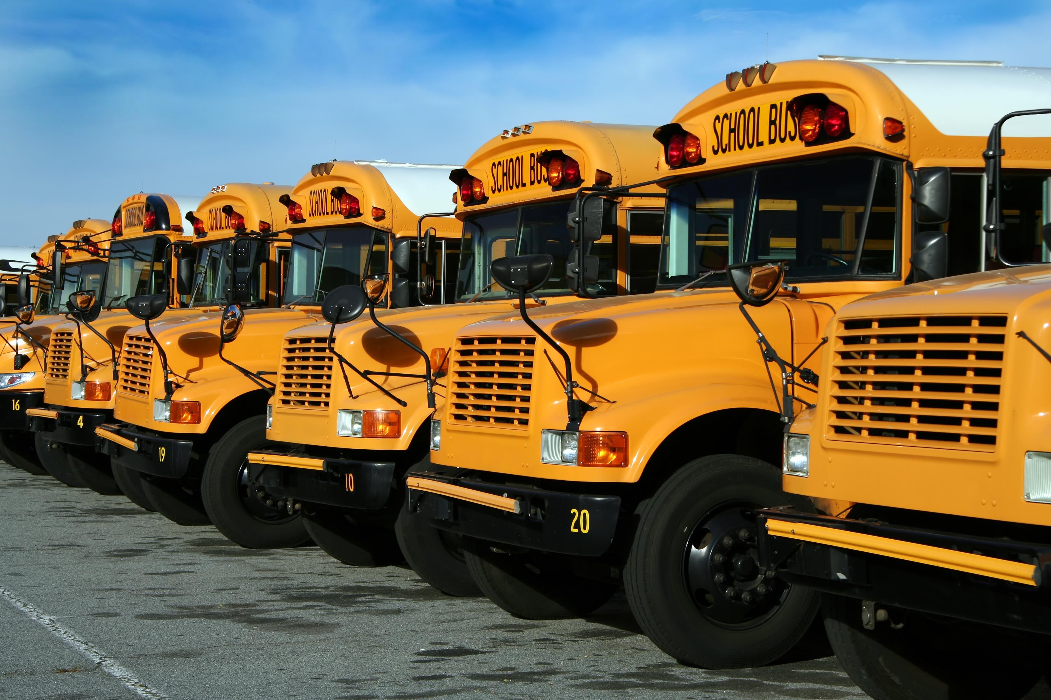 School Buses 3456x2304