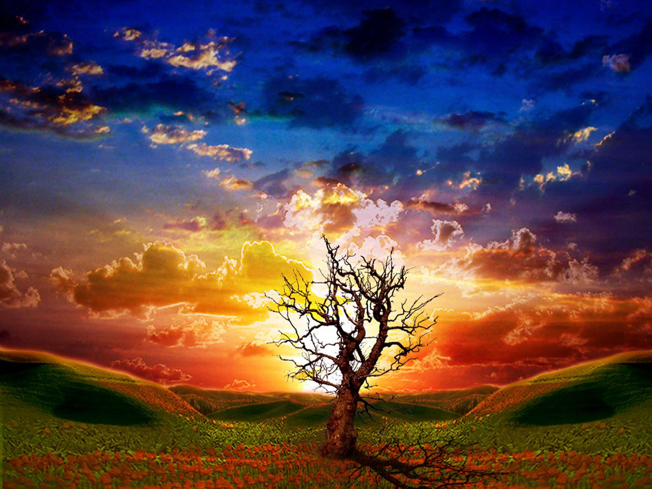 48 beautiful moving wallpapers for desktop on - Anime moving wallpaper for pc ...