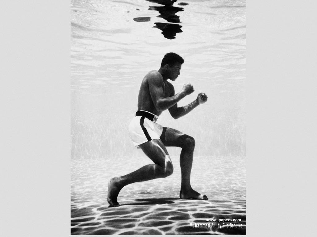 Muhammad Ali Wallpaper Posters Desktop Wallpapers 1024x768