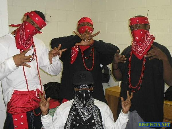 Palin Famous Blood Gang Blood Piru Knowledge 600x450