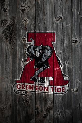 Alabama Crimson Tide Alternate Logo 2 Wood iPhone 4 Background by 333x500