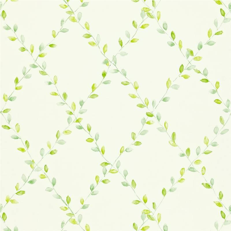 Green   212438   Spring Trellis   Options 11   Sanderson Wallpaper 800x800