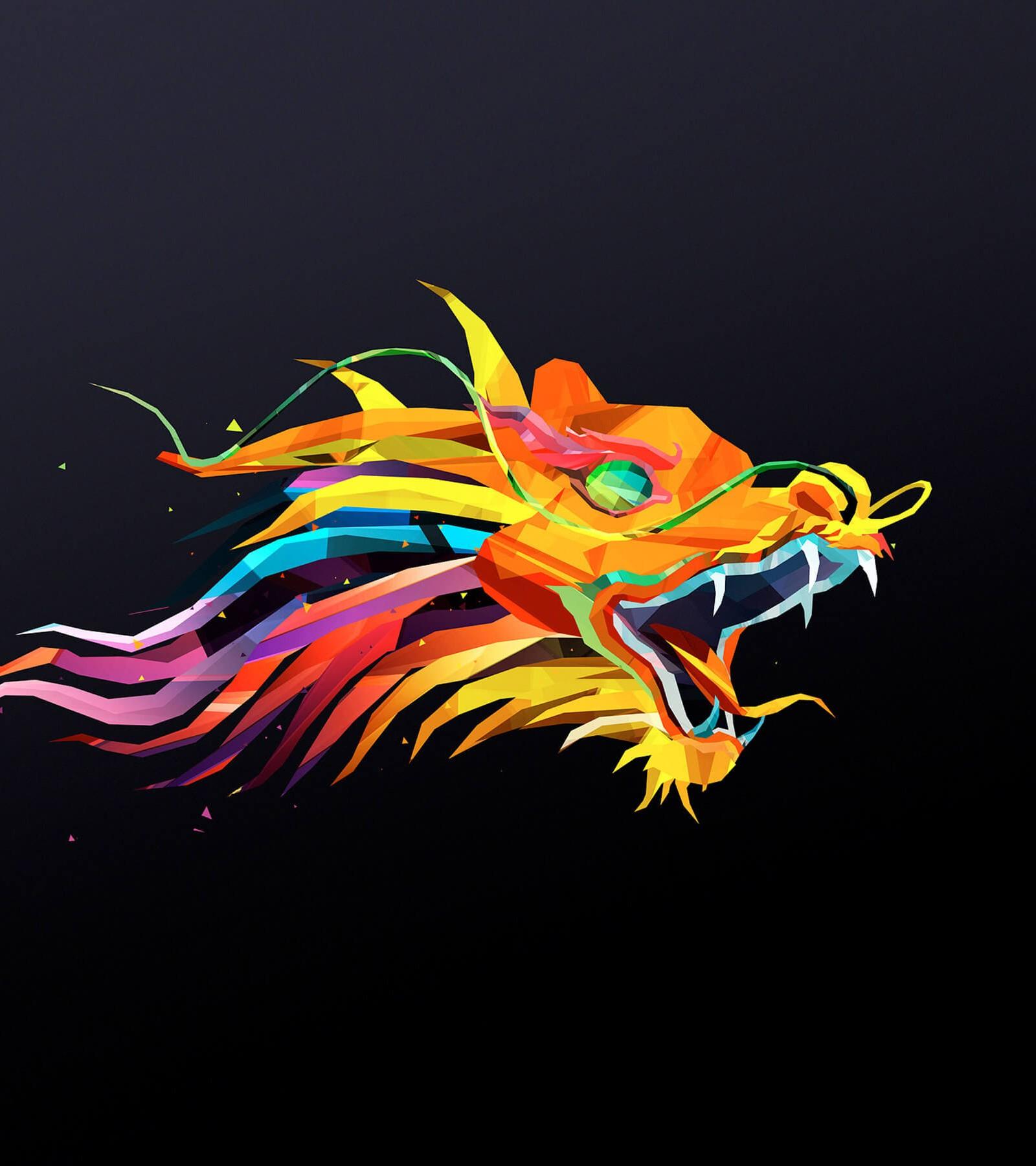The Dragon HD wallpaper for Kindle Fire HDX 89   HDwallpapersnet 1600x1800