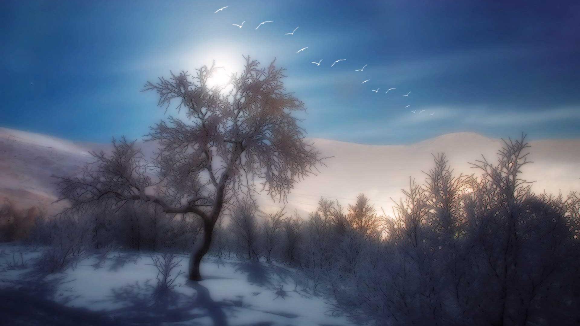 1366X768 HD Desktop Wallpapers Winter