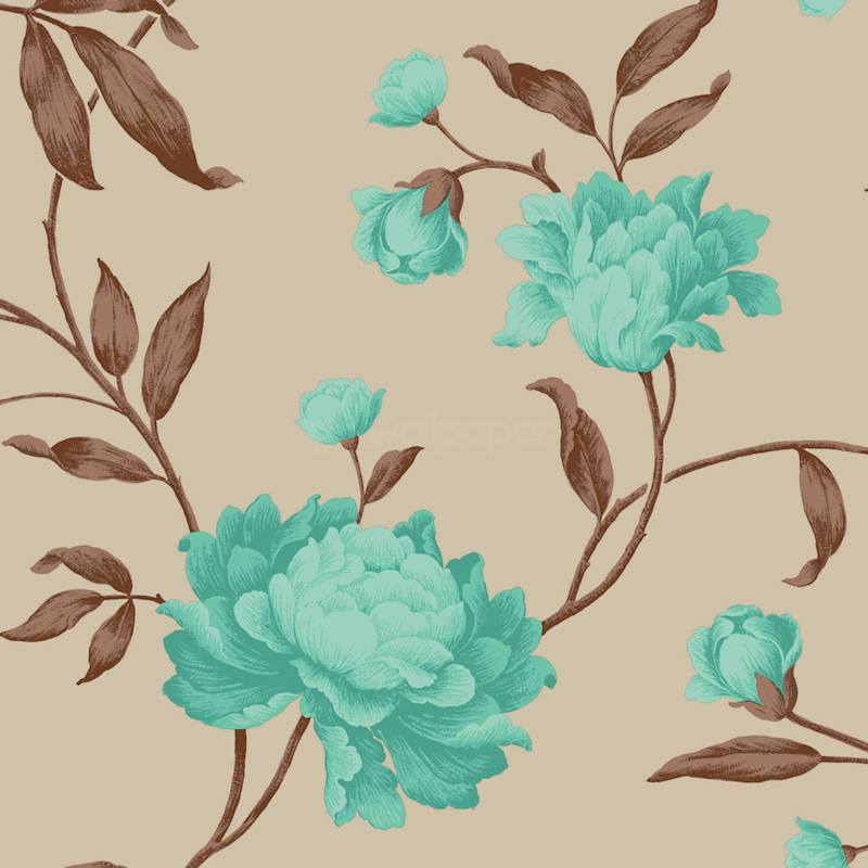 Teal Floral Background Teal chocolate wallpaper 800x800