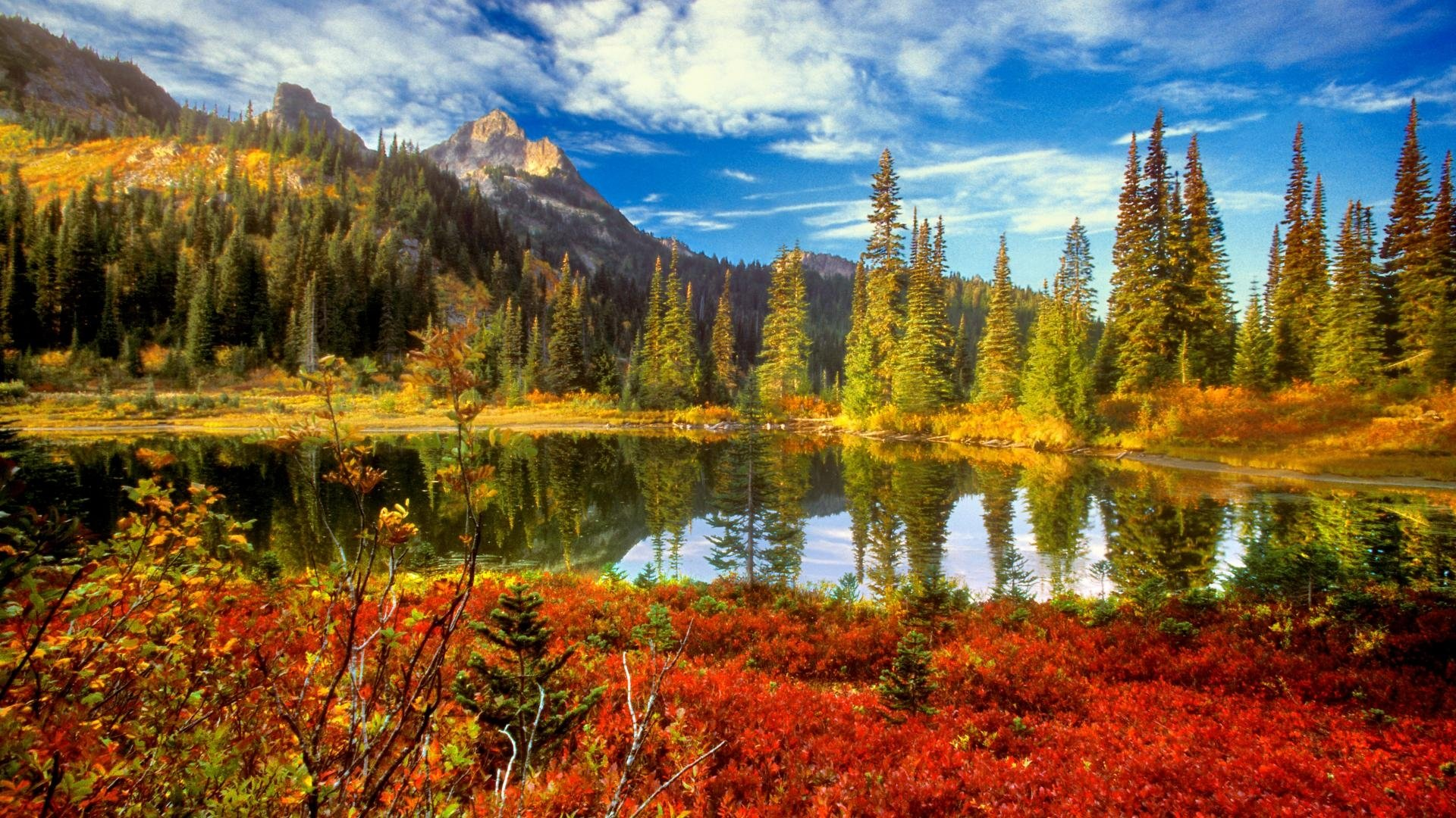 Beautiful Fall Backgrounds 35856 Hd Wallpapers Background   HDesktops 1920x1080