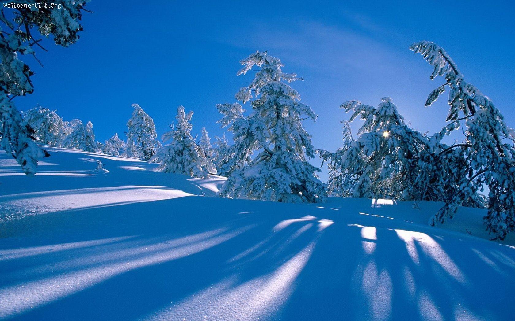 Snow Scenes Desktop Background desktop wallpaper 1680x1050