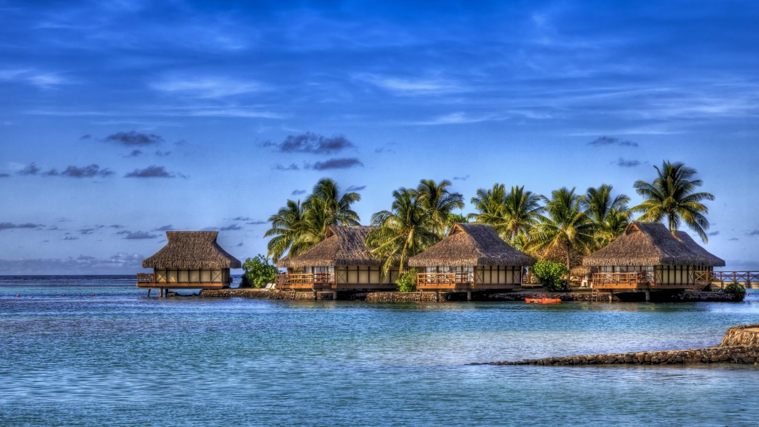 Tropical Island Beach Hd Wallpapers 2560x1440