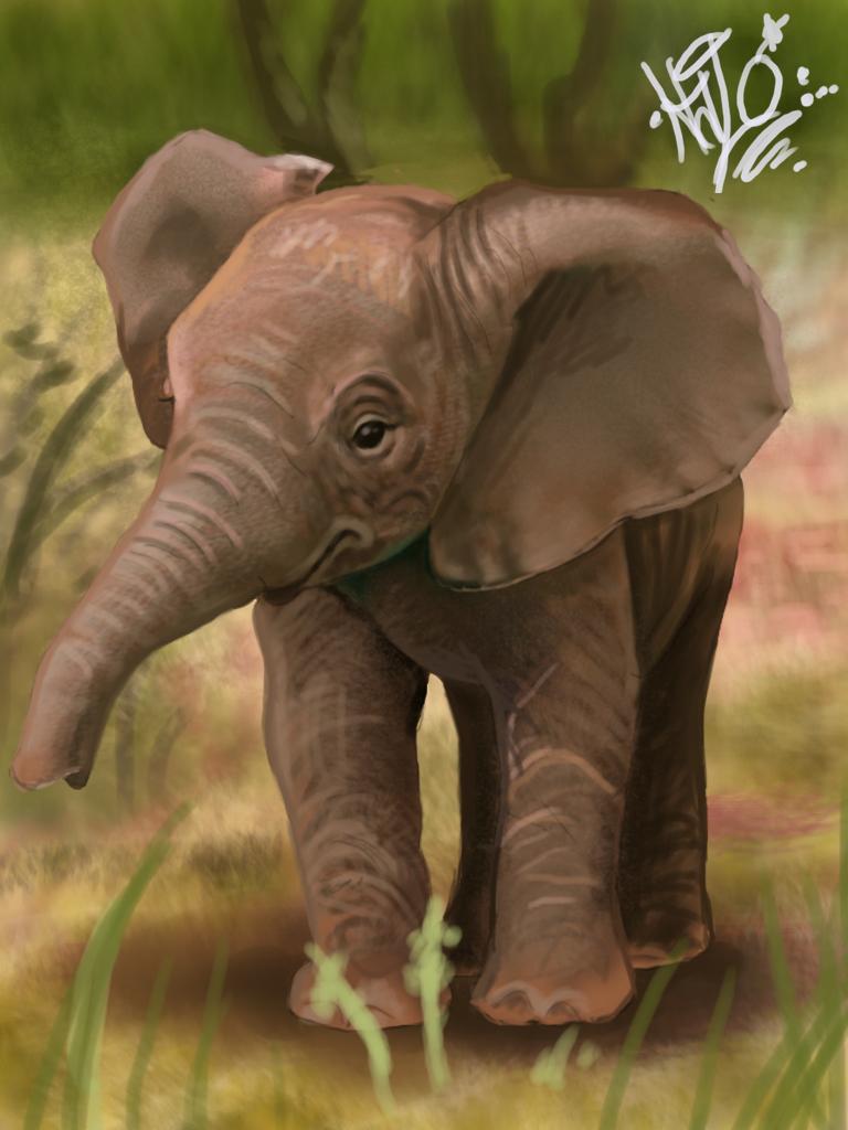 Baby elephant speed painting by tattoosbyhalo 768x1024