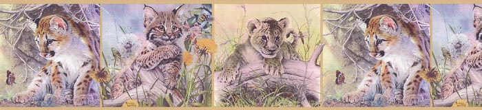 Loates COUGAR CUB WILD CAT Wallpaper Border GL76371 370326274945 700x160