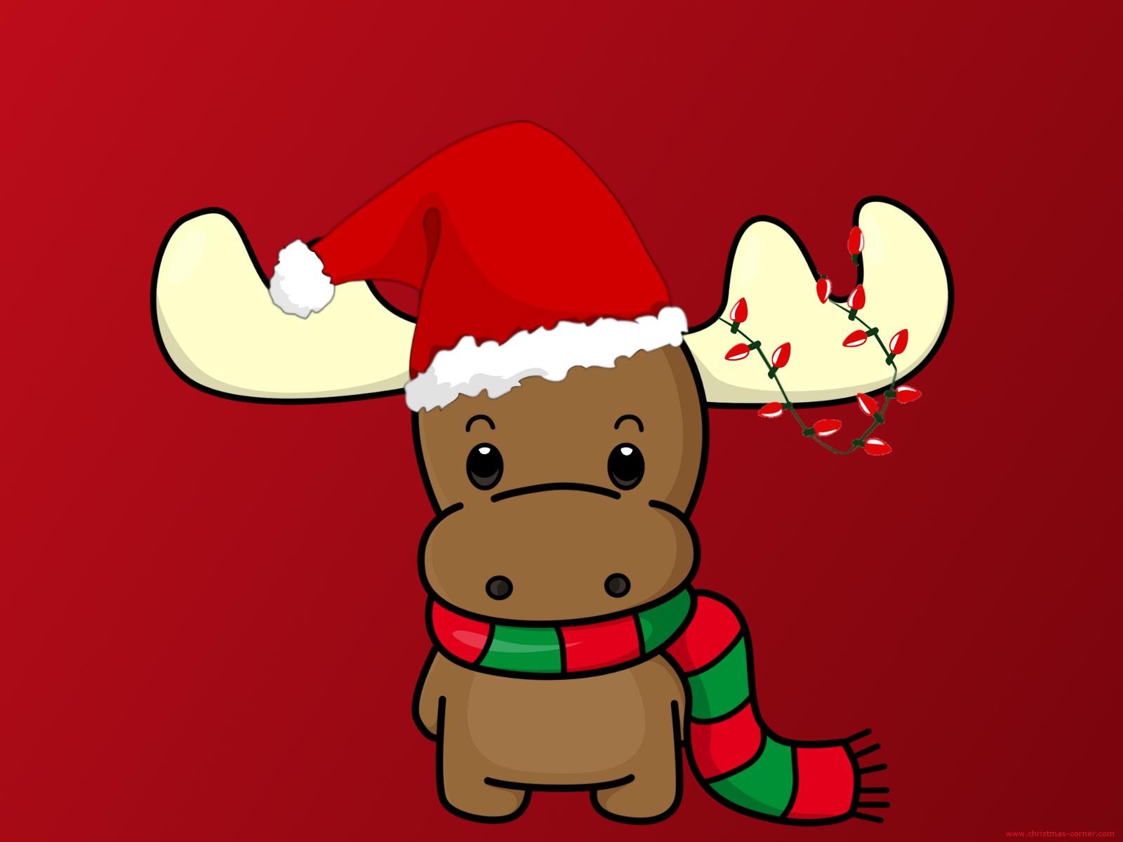 Cute Christmas Deer Exclusive HD Wallpapers 6034 1600x1200