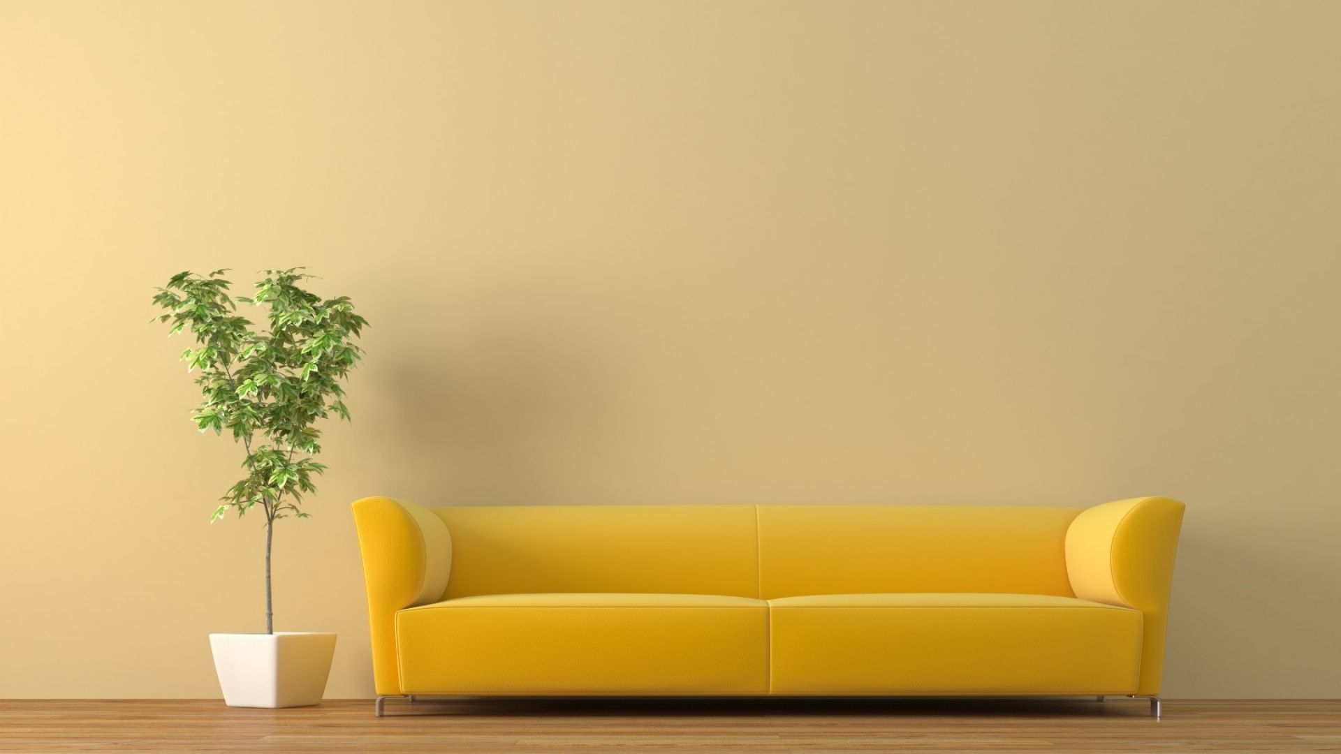 1920x1080 Wallpaper sofa tub plant   background for showing 1920x1080