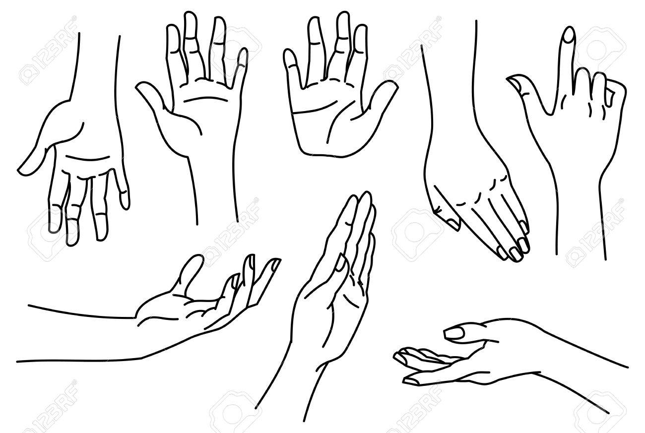 Outline Images Of Hands Contour Human Palms Wrists Gestures 1300x873