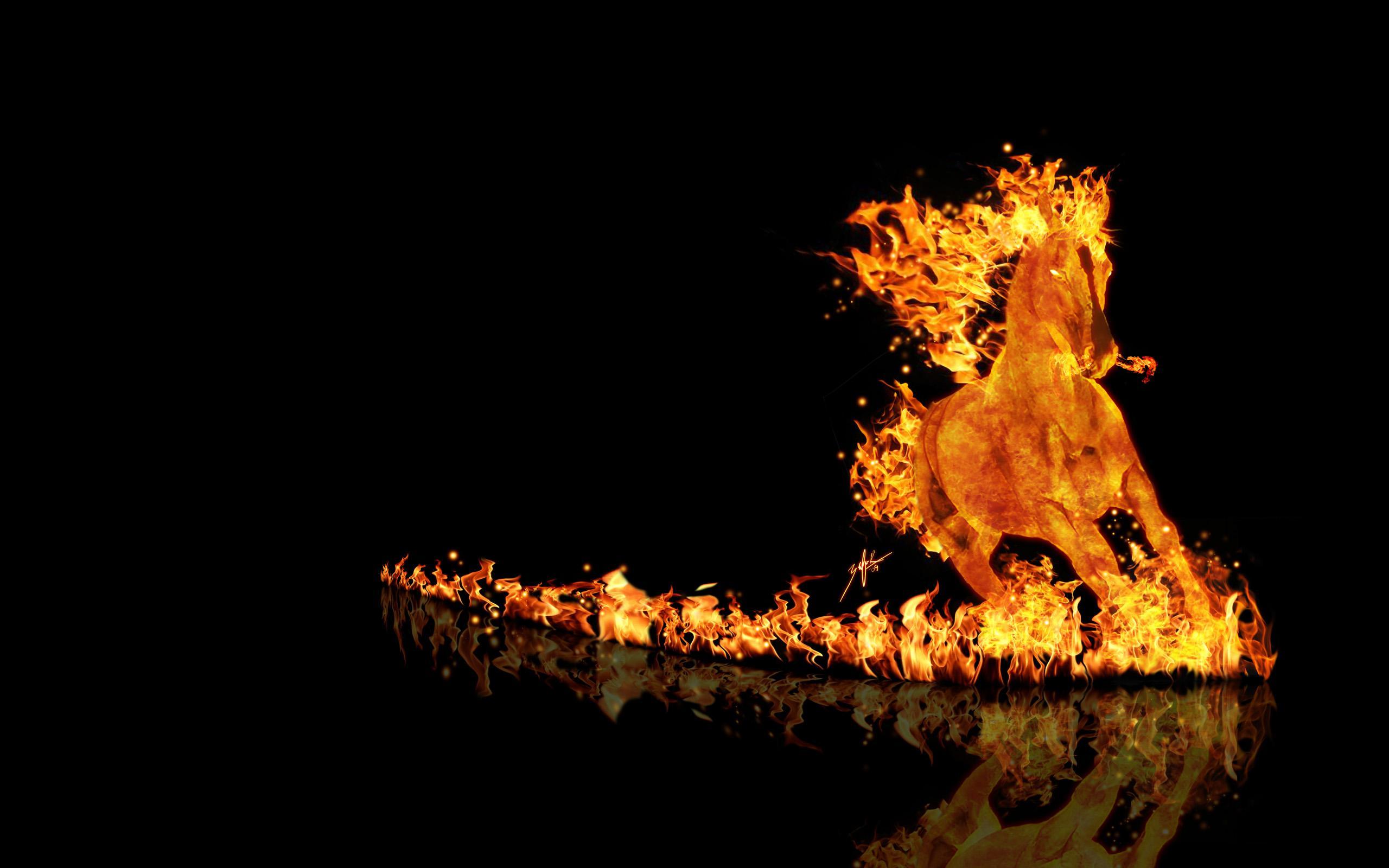 wallpaper   fire horse is a great wallpaper for your computer desktop 2560x1600