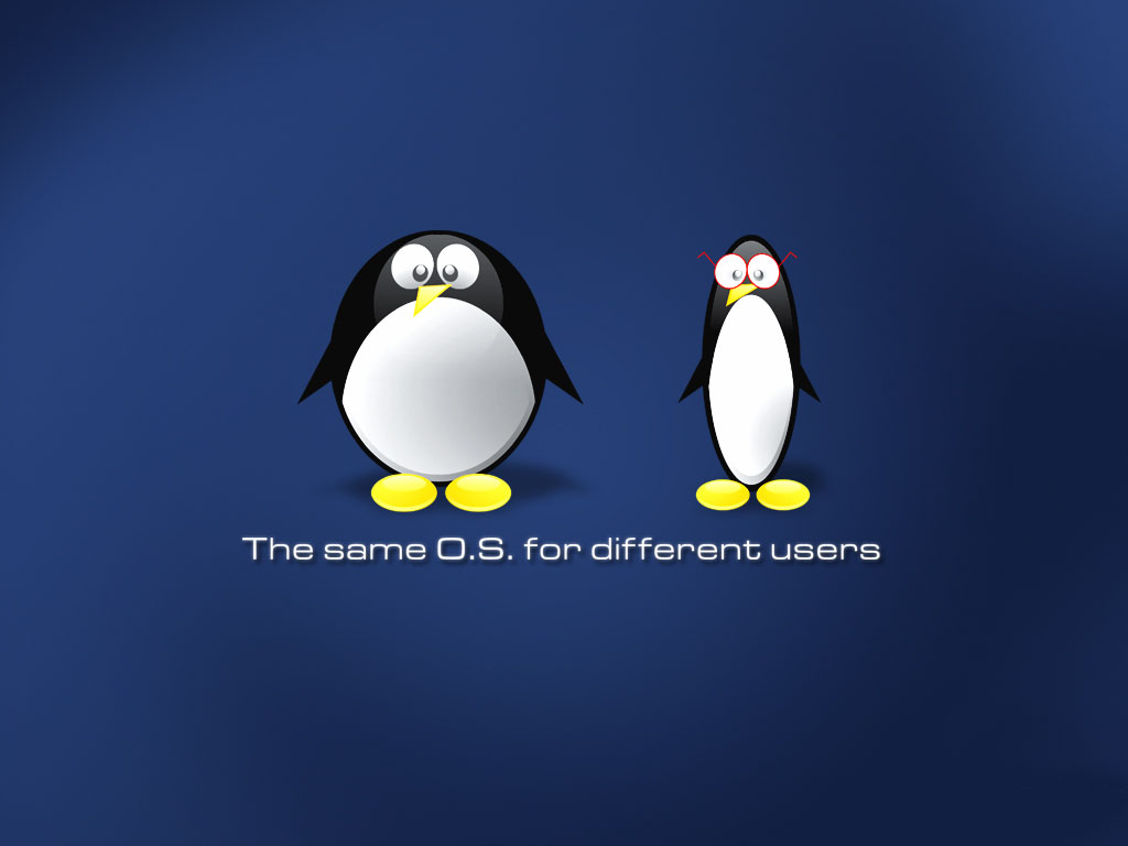 Linux Unix Wallpapers 2009 4jpg Tux Wallpaper Linux For Windows 1024x768