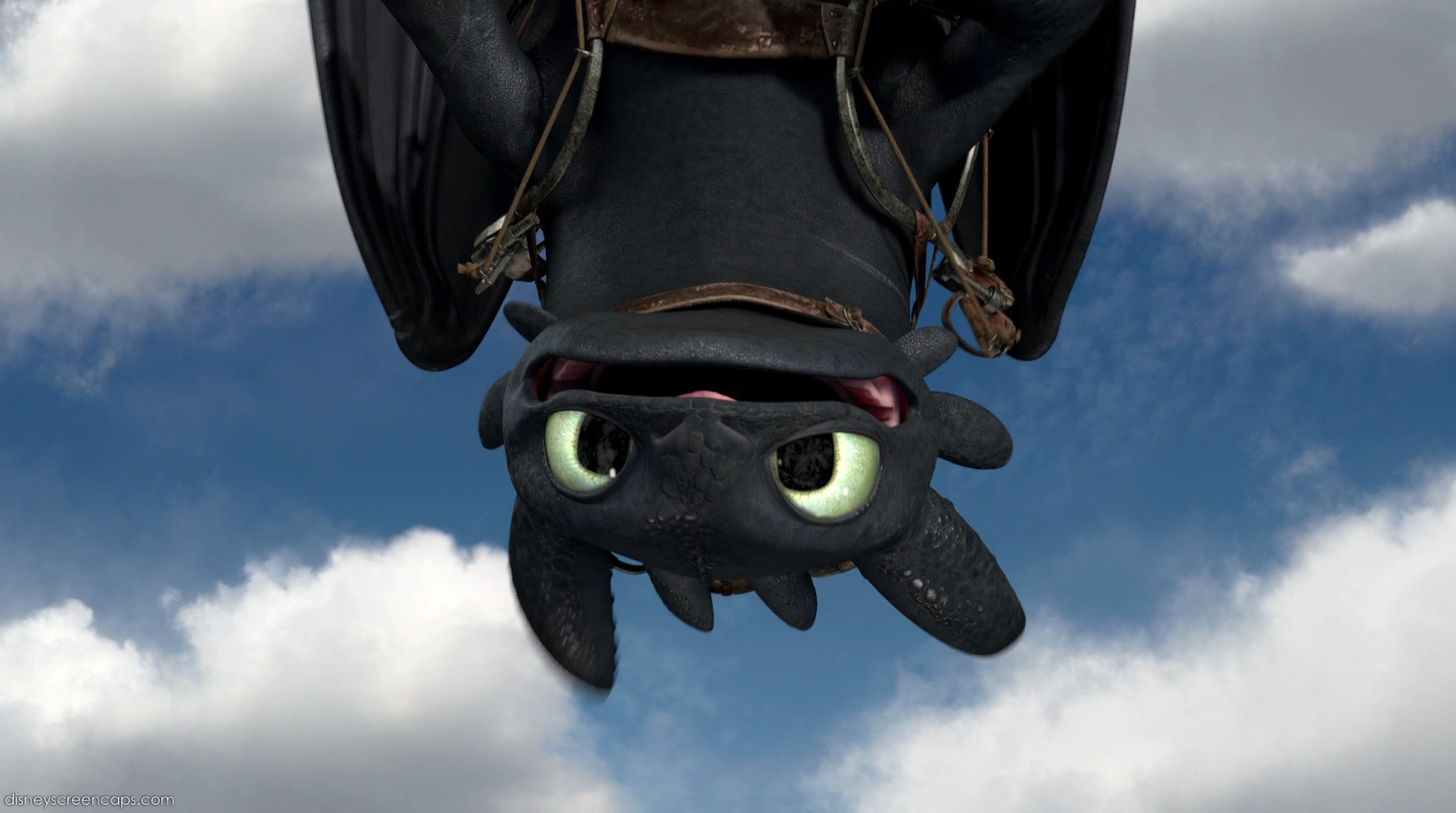Gift Of The Night Fury Screencap   Toothless by DashieSparkle on 1920x1072