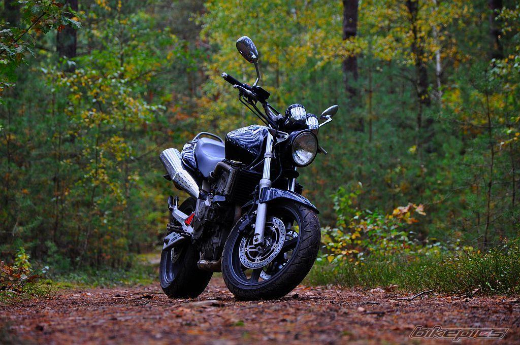 2001 Honda CB 600 Hornet Picture 2601910 1024x680