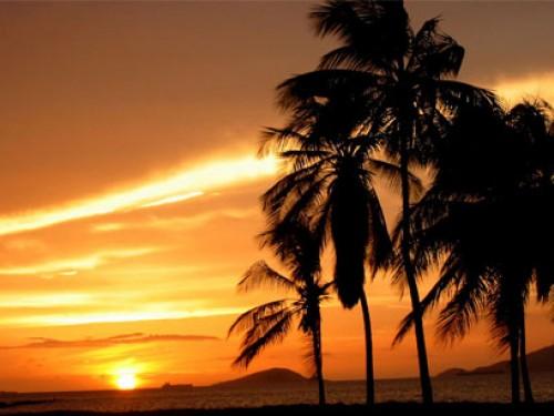 Free Tropical Screensaver Screensavers - Download Tropical Screensaver ...