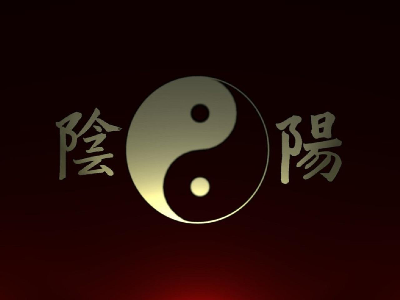 Dragon yin yang wallpaper wallpapersafari for Yin yang raumgestaltung