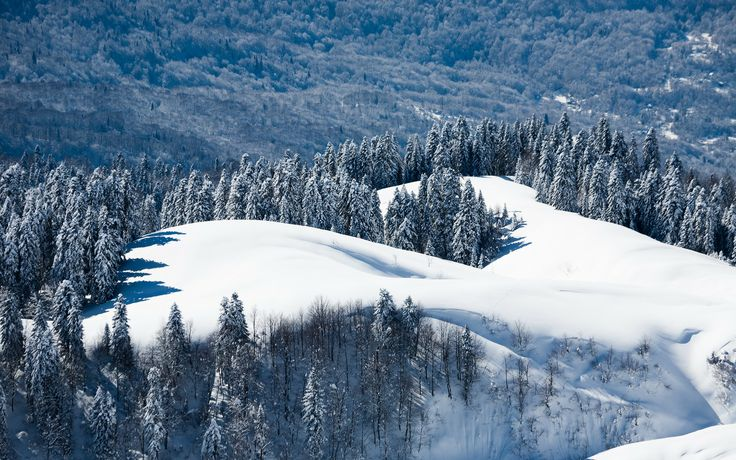 Looks like a great place to go skiing 736x460