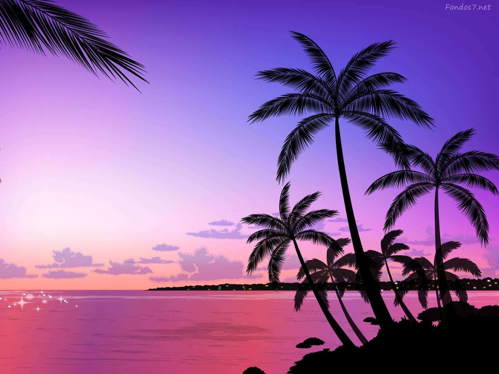 Descargar Fondos de pantalla amanecer violeta y palmeras hd widescreen 1600x1200