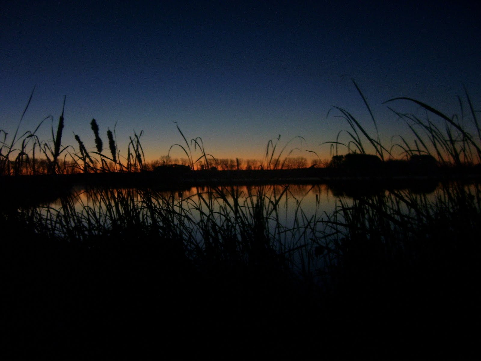 Waterfowl Hunting Wallpaper for Pinterest 1600x1200