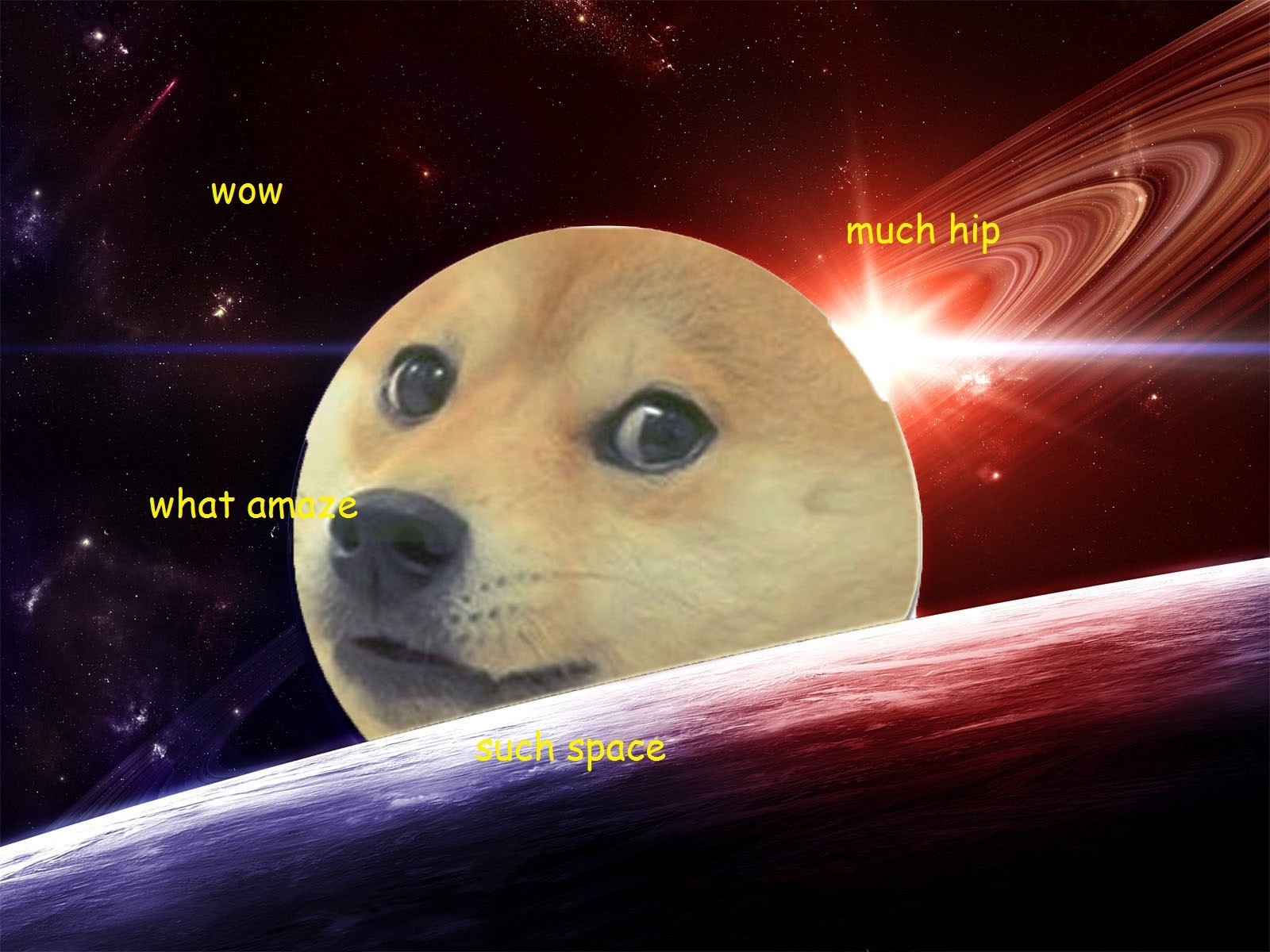 14011 doge in space - photo #10