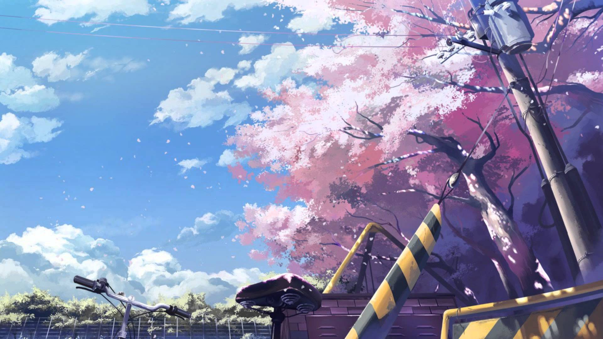Download Anime Cherry Blossom Background 1920x1080
