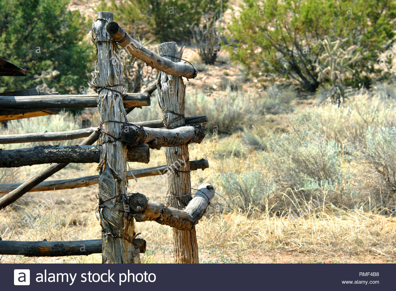 Background images shows old corral with bark edged wooden posts 1300x953
