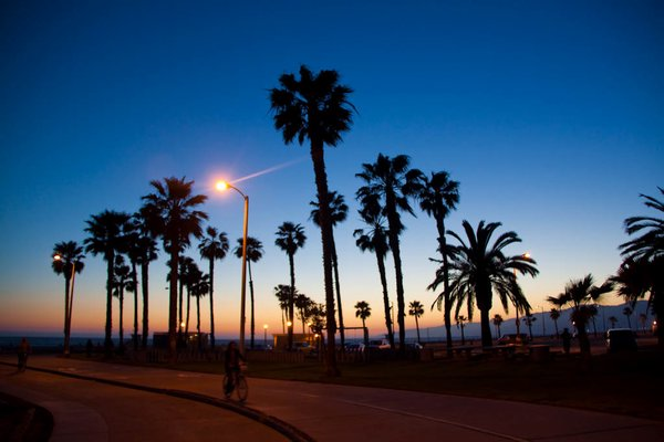 Venice beach sunset Photo 600x400