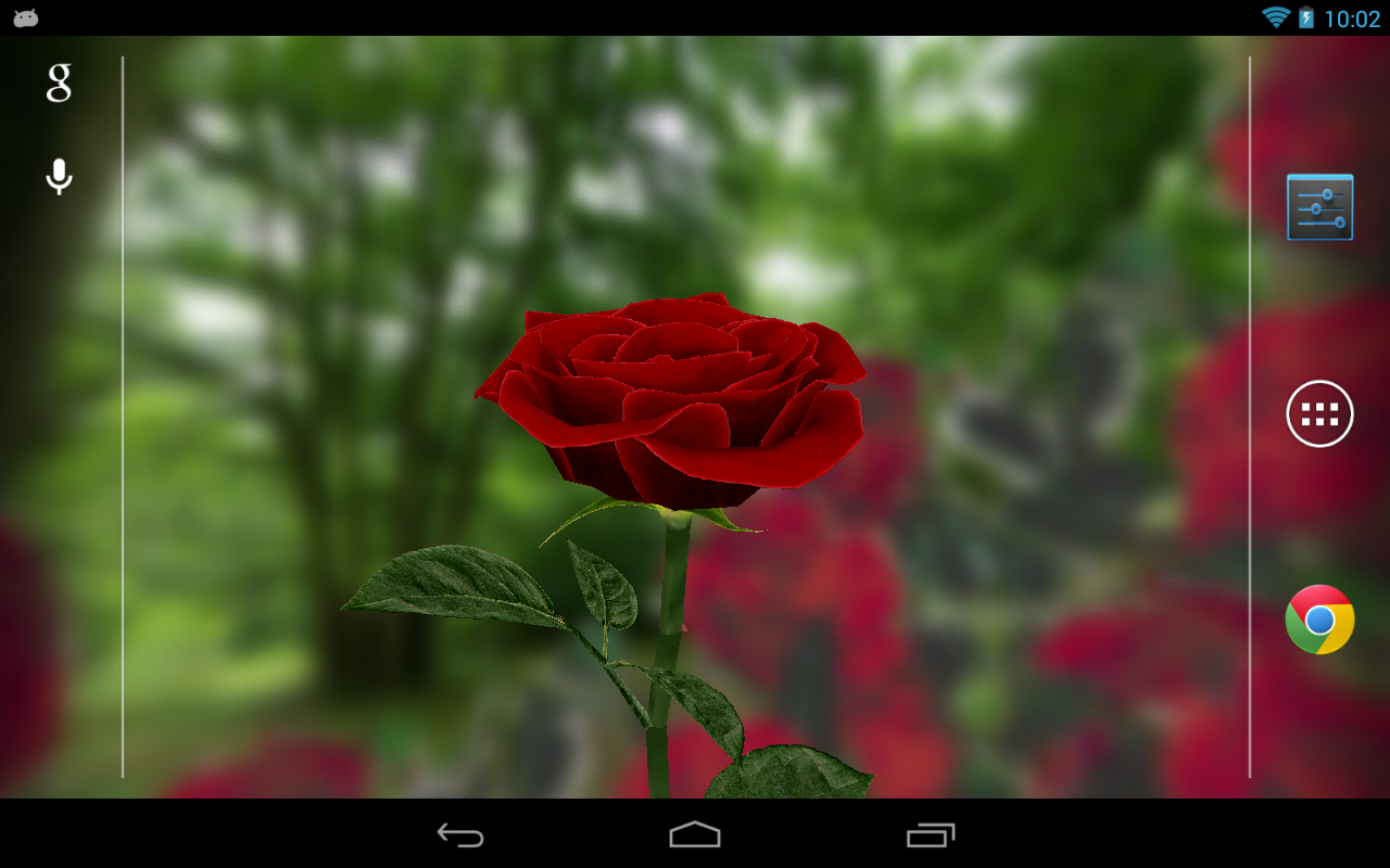 3D Rose Live Wallpaper   screenshot 1280x800